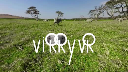 Virry VR with Drozdov