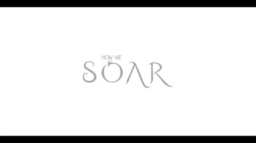 How We Soar